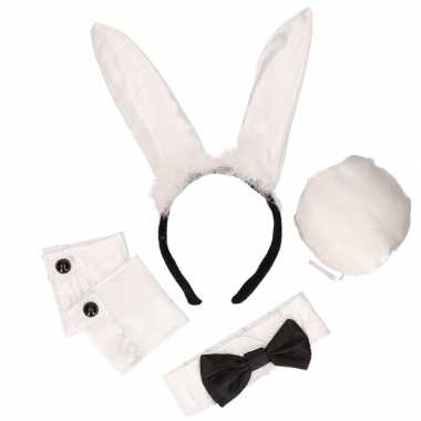 2x stuks bunny playboy verkleed setje