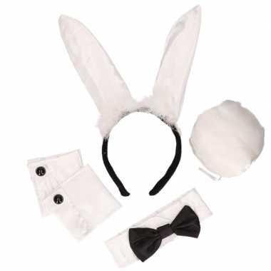 4x stuks bunny playboy verkleed setje