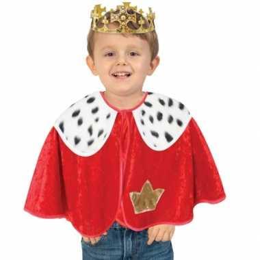 Peuter verkleed poncho koning mantel